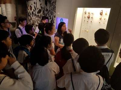 P6 Learning Journey - Lee Kong Chian Natural History Museum 01